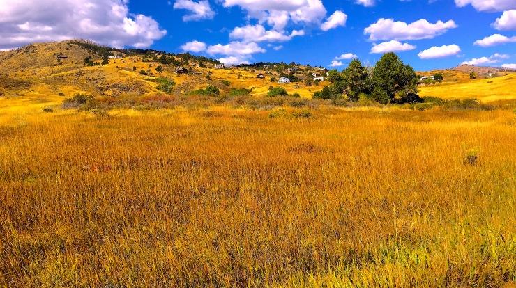 Colorado vista copy 3.jpg